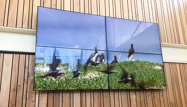 audiovisueel-gemeente-amsterdam